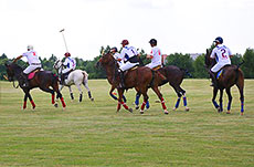 Potapovo Polo Cup